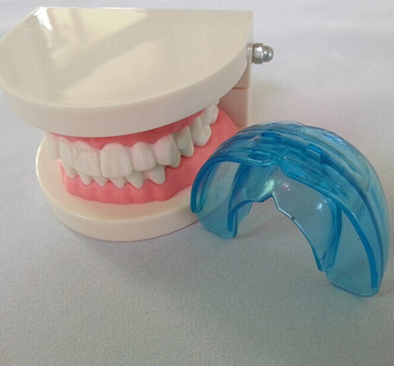 Dental Oral Teeth Orthodontic Appliance Trainer Doctor Alignment